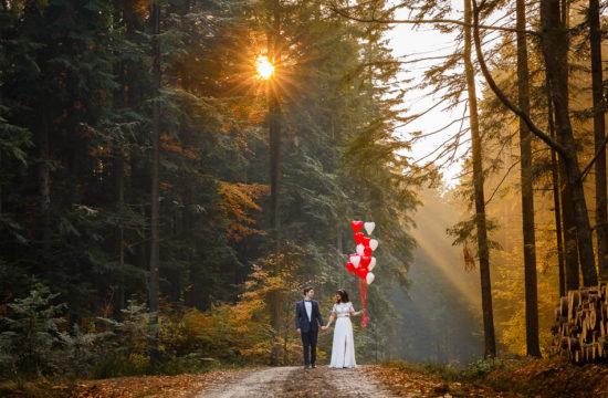 sesja ślubna w magicznym lesie
